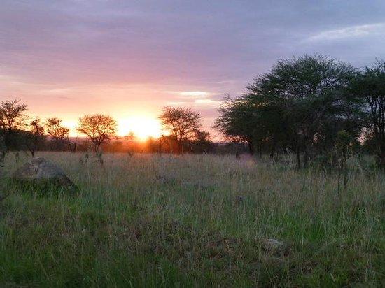 Mbuzi Mawe Serena Camp: Nearby sunrise view