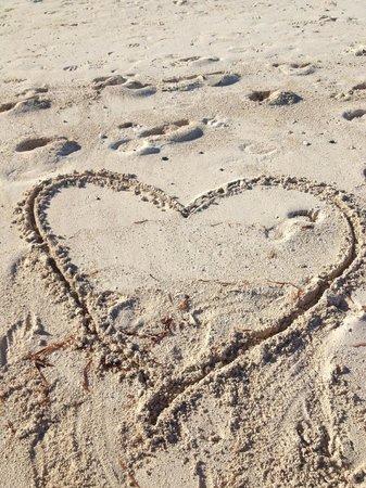 Breezes Resort & Spa Bahamas : we loved it!