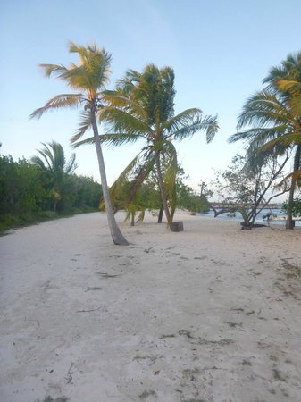 Walk to Lagoon