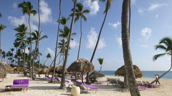 Paradisus Palma Real Golf & Spa Resort: beach view, royal service
