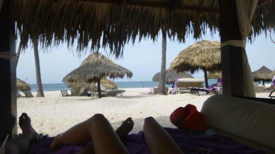 Paradisus Palma Real Golf & Spa Resort: nap cabana, royal service pool