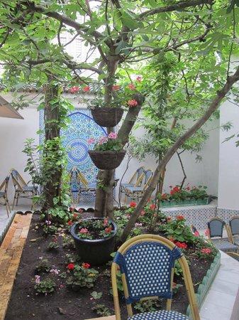 La Mosquee: Mosque garden/entrance/tea area