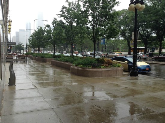 Hilton Chicago: Just outside the main entrance, as it was raining !
