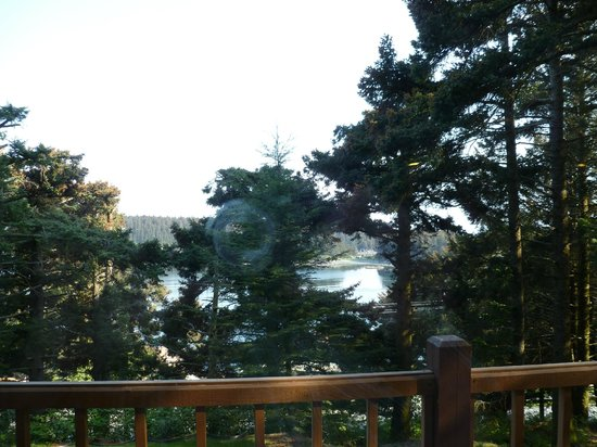 A Channel View B&B: View of the trees