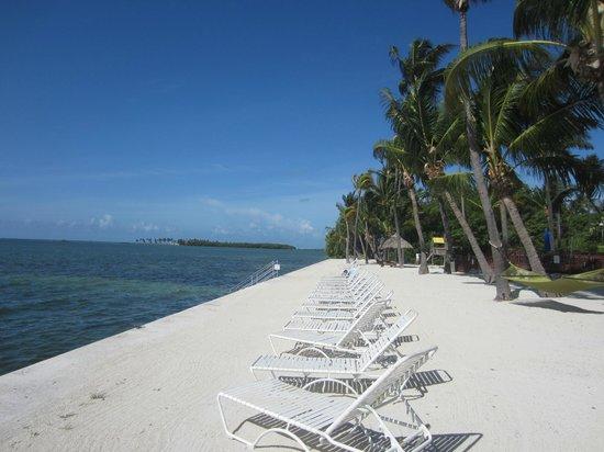 Amara Cay Resort: La plage à côté de l'hôtel