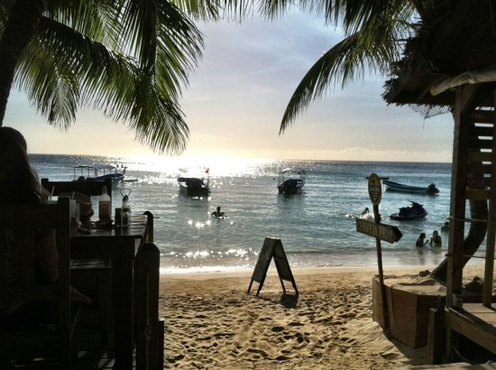 Bananarama Beach and Dive Resort: View from Thirsty Turtle Bar & Grill