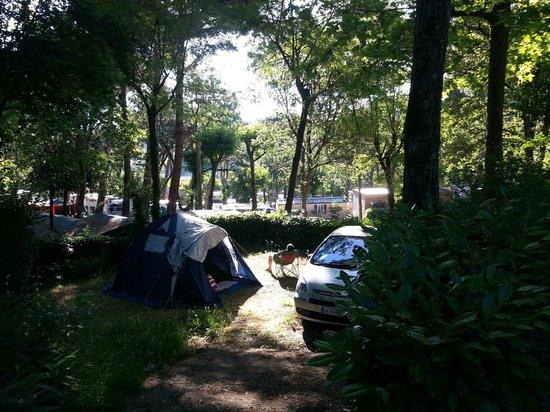 Norcenni Girasole Club : piazzola tenda