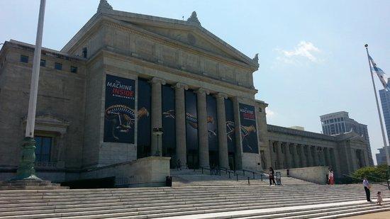 The Field Museum: Field Museum