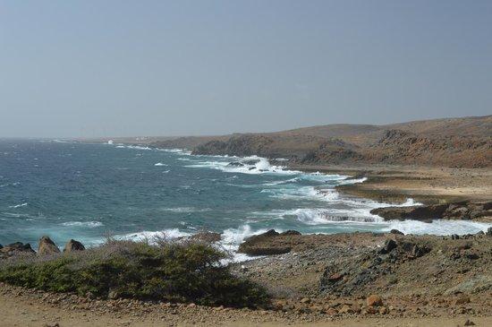 De Palm Tours: View of coastline