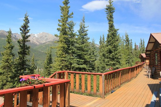 Denali Crow's Nest Cabins: Spectacular views around every corner of the property.