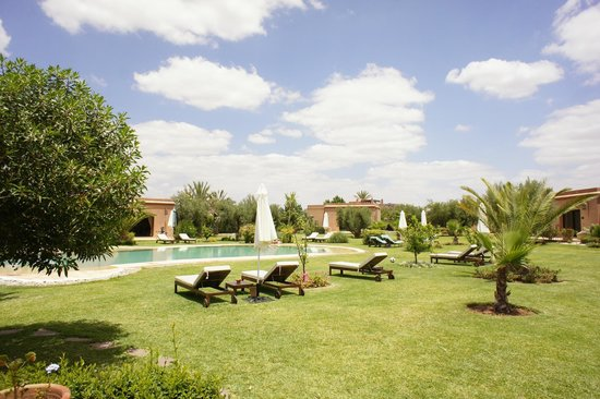 Oasis Jena : Une véritable oasis