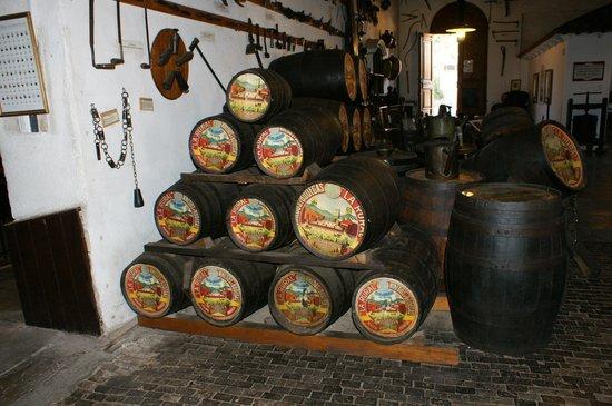 Museo del vino: Partes de uma história