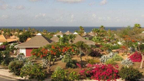 Chogogo Resort: vista desde el balcon