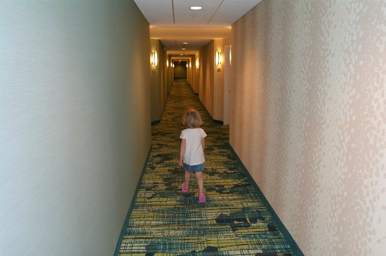 SpringHill Suites Orlando at SeaWorld® : Corridor
