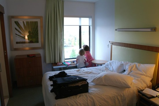 SpringHill Suites by Marriott Orlando at SeaWorld: Interior of room