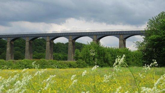 Pontcysyllte Aqueduct: 菜の花畑と水道橋