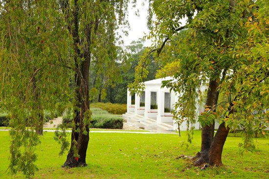 Bloomestate: The wonderful garden