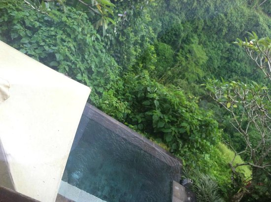Natura Resort and Spa: View of the rainforest from the villa