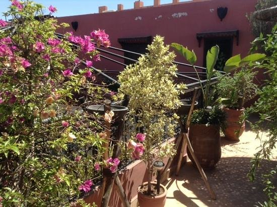 Riad La Porte Rouge : roof terrace