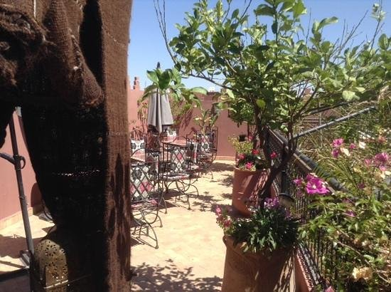 Riad La Porte Rouge : breakfast on the terrace