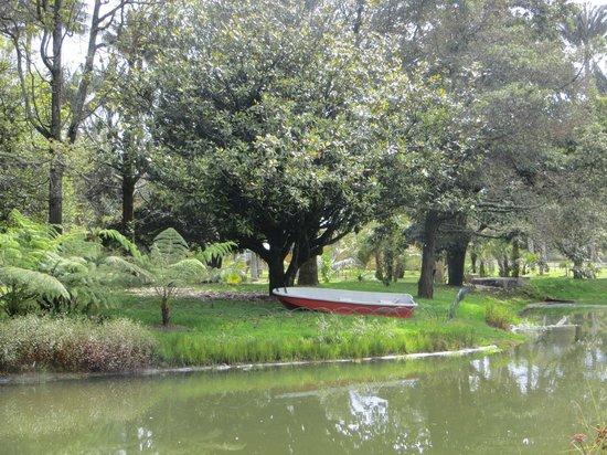 Jardin Botanico Jose Celestino Mutis: Vista del lago