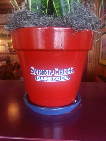 Spring Creek Barbeque : Absolutely great Texas BBQ!