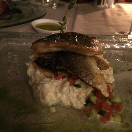 Andronis Boutique Hotel : Sea Bream on mashed cauliflower. Creamy, buttery, delicate, wonderful.
