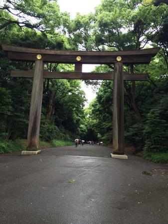 Meiji Jingu Shrine: Meiji jingo shrine on a rainy day