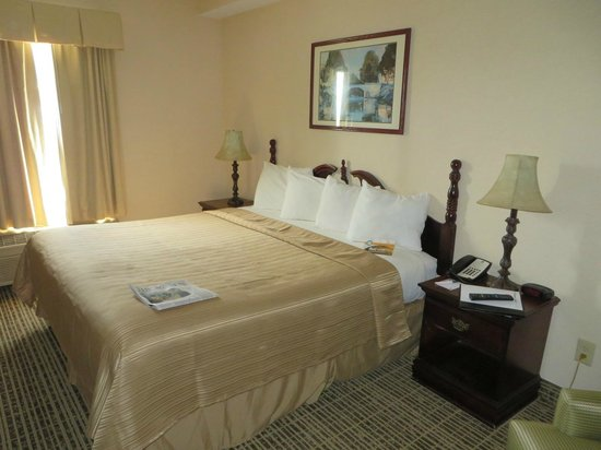 Quality Inn Oak Ridge : Nice bed and pillows, alarm clock, reading light