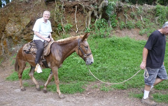 Molokai Mule Ride: Frank led by Mike at top of trail