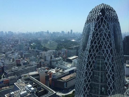 Seiji Togo Memorial Sompo Japan Nippponkoa Museum of Art : View from gallery on clear day