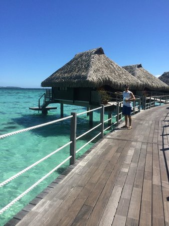 Hilton Moorea Lagoon Resort & Spa : room