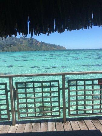 Hilton Moorea Lagoon Resort & Spa: view