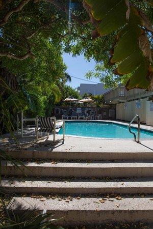 Charlie's Island Hideaway : Pool