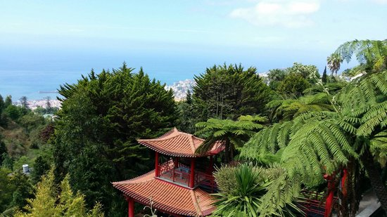 Monte Palace Madeira : Jardin botanique