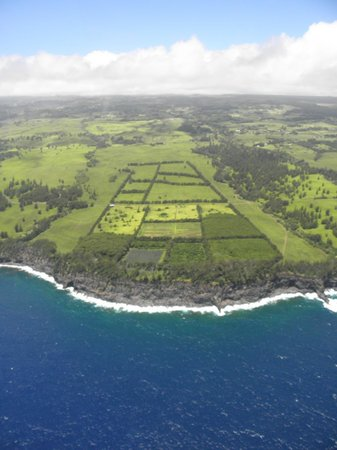 Paradise Helicopters - KONA: Agriculture south of Hilo