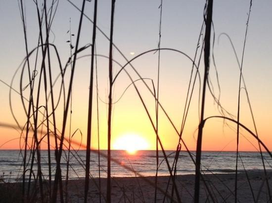 Blue Dolphin Cottages: sanibel sunset