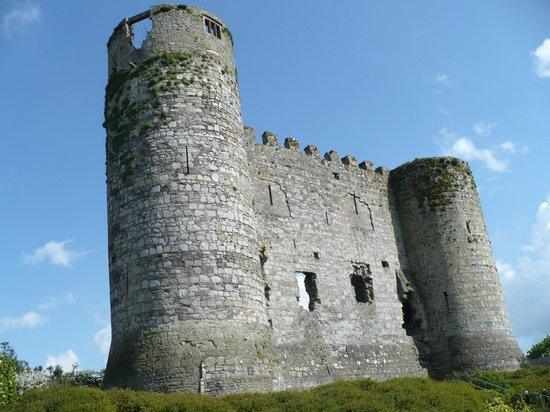 Carlow Castle: Il castello visto lateralmente