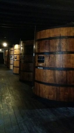 Blandy's Wine Lodge: Blandy's caves