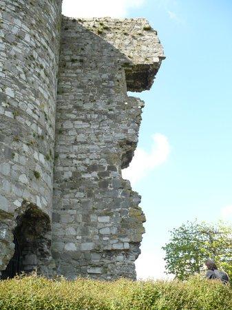 Carlow Castle: Esterno del castello