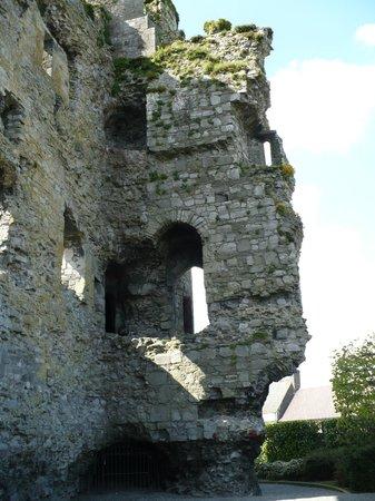Carlow Castle: Particolari dell'esterno del castello