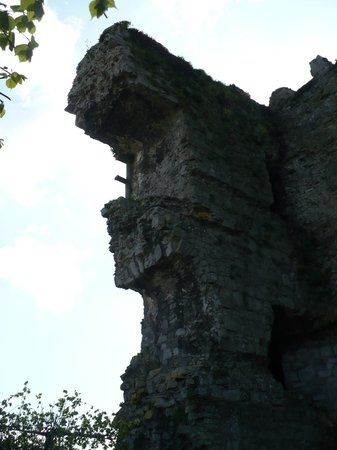 Carlow Castle: Ruderi