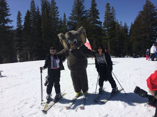 Mammoth Mountain Inn : Woolly on the Mountain
