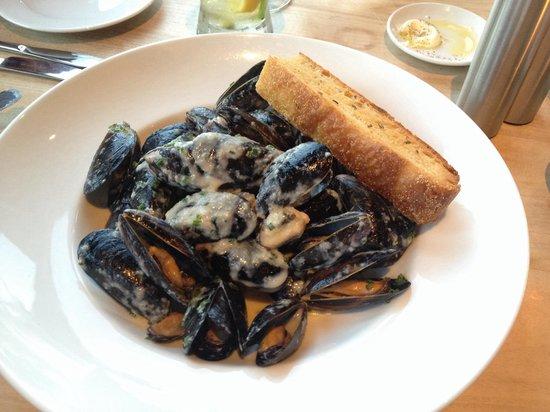 Fetch Restaurant: ムール貝、 クリーミーソース