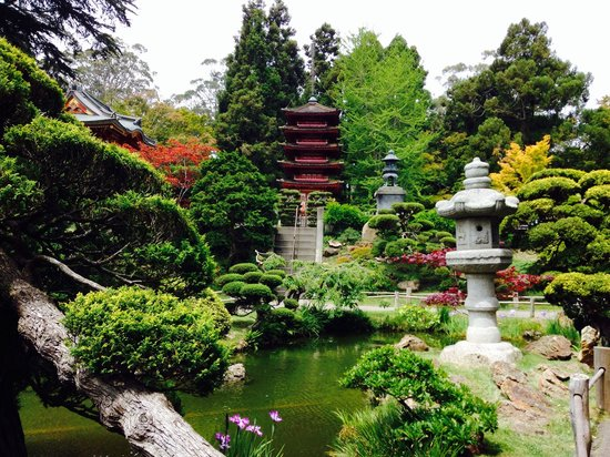 View  from Japanese tea garden