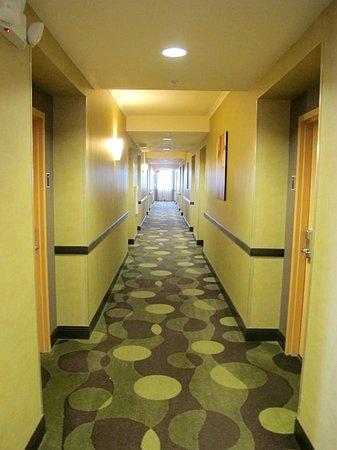 BEST WESTERN PREMIER Miami International Airport Hotel & Suites: Hallways