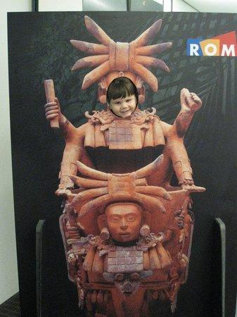 Royal Ontario Museum (ROM): ROM