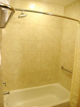 Best Western Premier Miami International Airport Hotel & Suites: Roomy shower