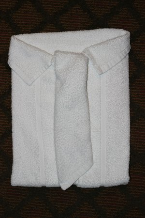Hampton Inn & Suites Orlando - South Lake Buena Vista: Towel art was a nice touch. Thanks.