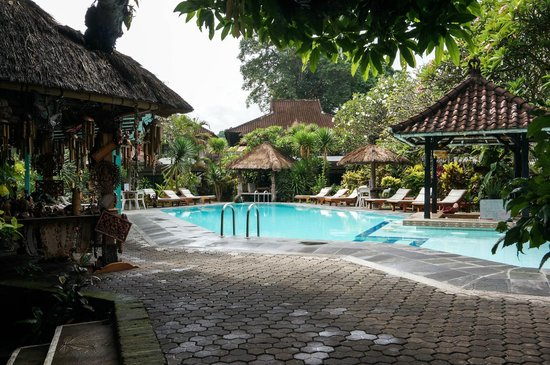 Puri Kelapa Garden Cottages : Swimming Pool